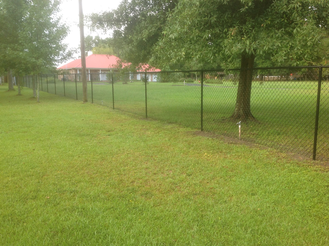 black chain link fencing