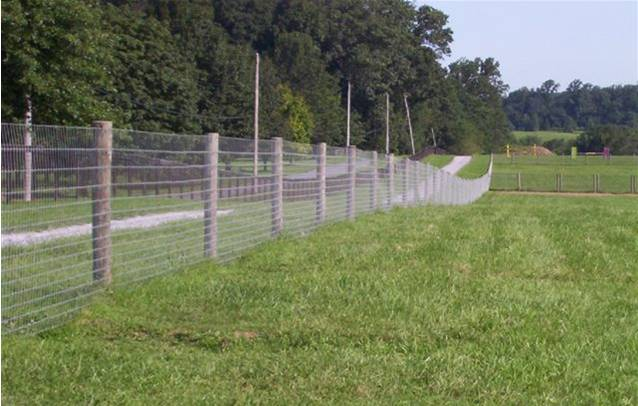 Florida Fence Contractor Palatka Fence Florida Fence
